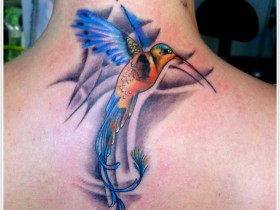 tattoo_krasnodar10